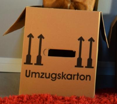 Maßen Umzugskartons - As-kartons.de
